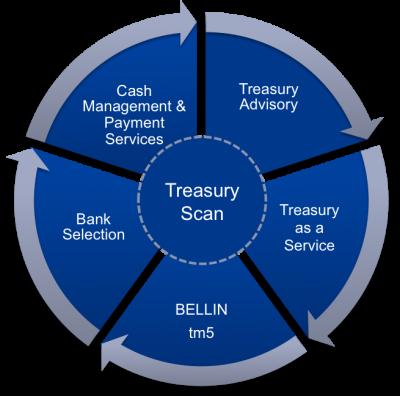 Treasury consulting