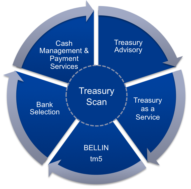 Treasury consulting