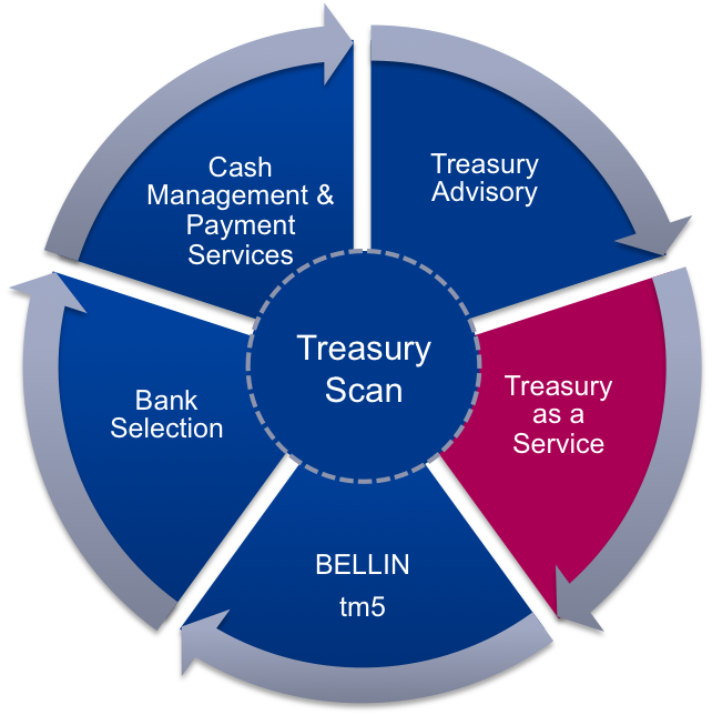 Treasury as a Service