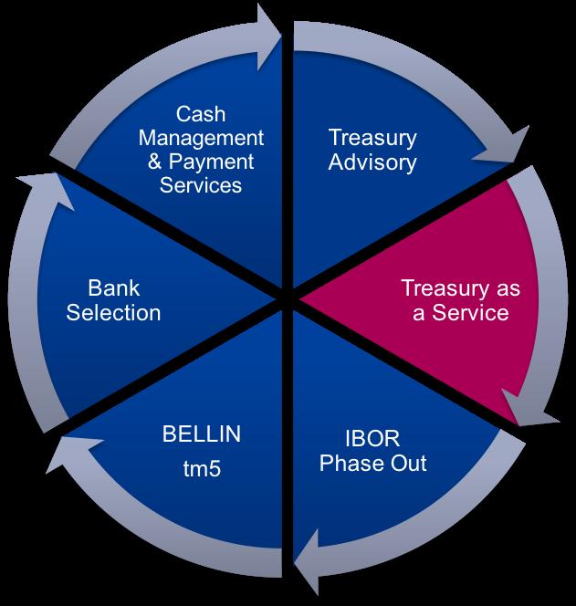 Treasury as a Service